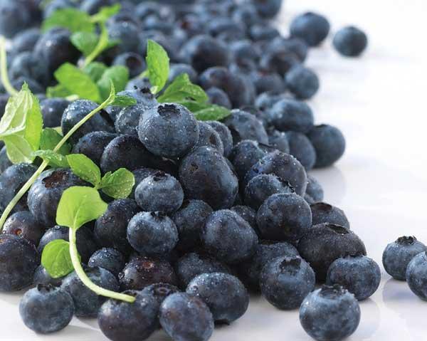 Blåbärens flavonoider mot erektionsproblem.