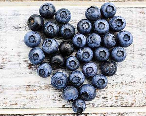 Blåbär formade till ett hjärta - blåbär skyddar mot högt blodtryck.