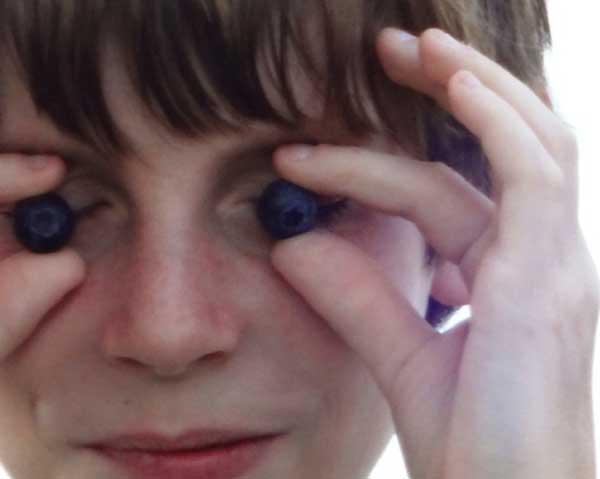 Blåbär framför ögonen - blåbär motverkar ålderförändringar i ögat.