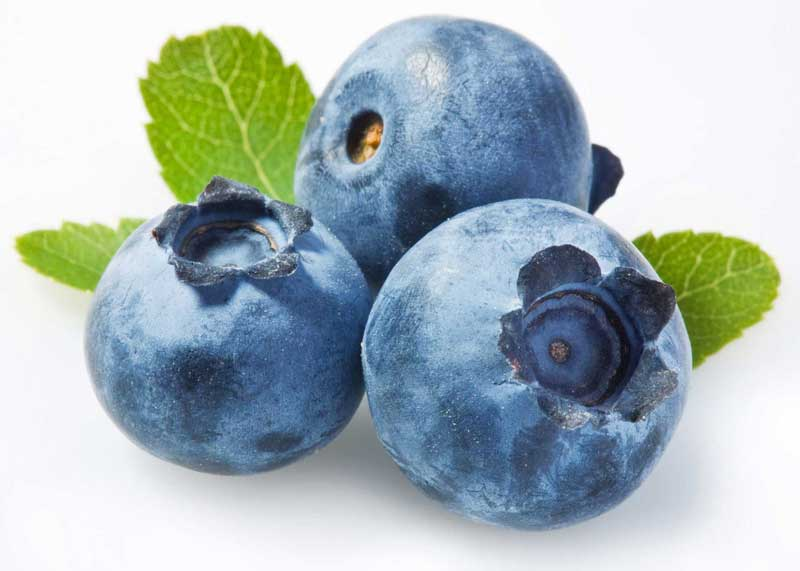 Tre blåbär - blåbär förebygger åldersrelaterade sjukdomar i ögonen.