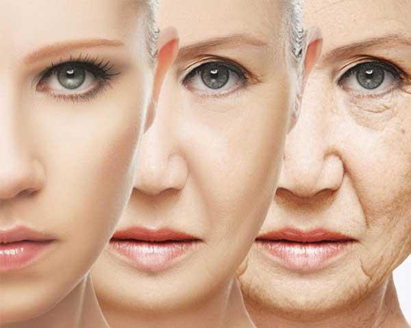 Syrestress - oxidativ stress - påskyndar åldrandet - blåbär skyddar.