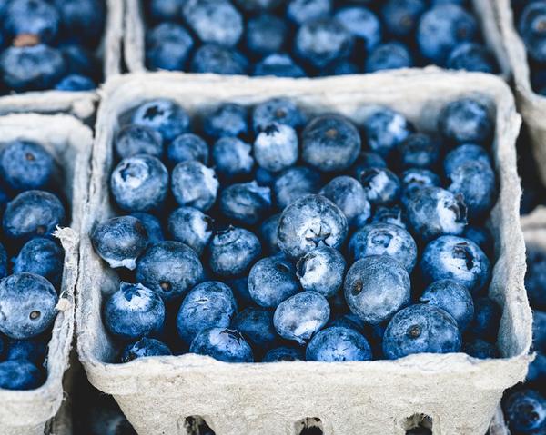 Kartonger med blåbär - blåbärens fibrer kan skydda vid kroniska inflammatoriska tarmsjukdomar.