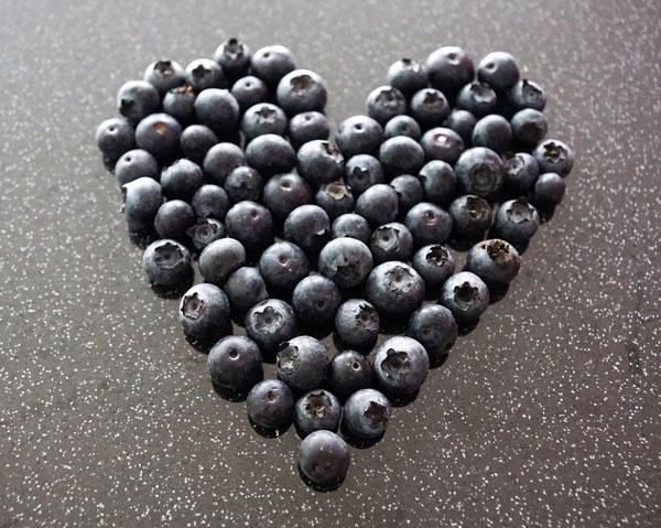 Blåbär kan sänka kolesterolet och skydda hjärtat